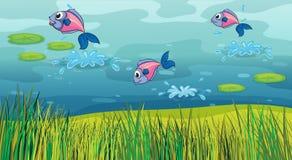 En fisk i en flod och ett härligt landskap royaltyfri illustrationer