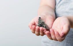 En fjäril av silkmoth i en child& x27; s-händer - dispar Lymantria royaltyfri foto