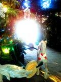 En fläck av ljus Royaltyfria Bilder