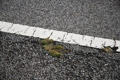 En fläckig linje på stadsvägen Royaltyfri Fotografi