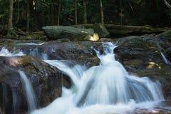 En flödande flodström i en skog arkivfoto