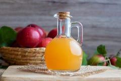 En flaska av äppelcidervinäger med nya äpplen Arkivbild