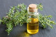 En flaska av nödvändig olja med nya timjansidor Royaltyfria Bilder