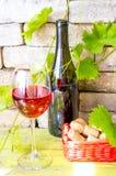 En flaska av rött vin. arkivfoto