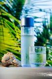 En flaska och ett exponeringsglas av nytt drickbart vatten i tropisk miljö royaltyfri bild