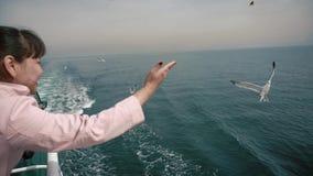 En flicka från brädet av ett turist- skepp kastar bröd till seagulls som fångar det på - - fluga stock video