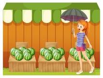 En flicka framme av vattenmelorna Fotografering för Bildbyråer