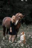 En flicka går i ett fält med en hund och en häst royaltyfri fotografi
