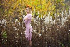 En flicka i en höstkrans och en rosa klänning står bland det vissnade gräset arkivbilder