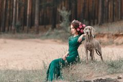 En flicka i en smaragdklänning och blommor som vävas in i hennes hår, sitter av skogen som går Weimaraner royaltyfri fotografi