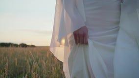 En flicka i en vit morgonklänning går över fältet på solnedgången liten flicka i en vit klänning som stöter ihop med fältet stock video