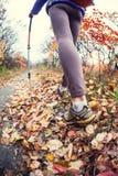 En flicka med trekking pinnar Arkivbild
