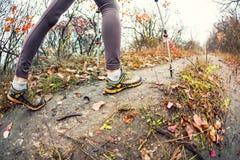 En flicka med trekking pinnar Arkivfoto
