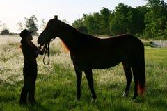 En flicka och hennes hästserie Arkivbild