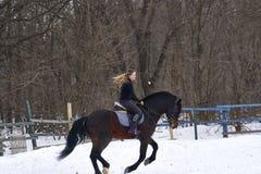 En flicka på en häst hoppar över barriären Utbildningsflickajockey som rider en häst En molnig vinterdag Arkivfoton
