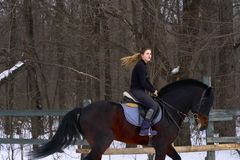 En flicka på en häst hoppar galopper En flicka utbildar att rida en häst i en liten paddock En molnig vinterdag Arkivfoton