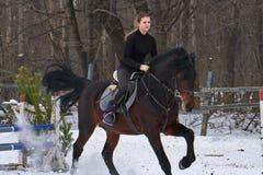 En flicka på en häst hoppar galopper En flicka utbildar att rida en häst i en liten paddock En molnig vinterdag Royaltyfri Foto