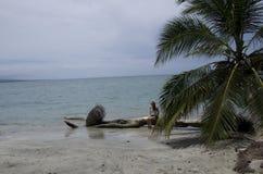 En flicka postade för en bild på Playa Blanca Fotografering för Bildbyråer