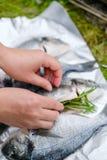 En flicka sätter rosmarinen i en fiskdorado Arkivfoto