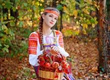 En flicka sitter i höstskogen med en korg av äpplen och rönnen Arkivbild