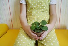 En flicka sitter med en suckulent i henne händer Plantera växter Vår En festlig påsk royaltyfria foton