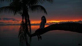 En flicka sitter på en palmträd på en bakgrund av den röda solnedgången på kusten lager videofilmer