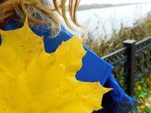En flicka som går på en kust som rymmer en bok Royaltyfri Fotografi