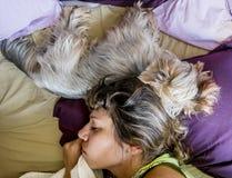 En flicka sover samman med en hund i sängen Royaltyfri Fotografi