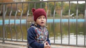 En flicka står nära dammet i parkerar som att flyga tagna bildjpeg-seagulls var stock video
