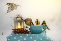 En flock av fågelmesen att äta korn i en kopp i vintern parkerar Naturlig vintersnöbakgrund Sagolikt foto royaltyfri bild