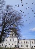 En flock av fåglar ovanför templet Royaltyfria Bilder