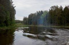 En flod i bakgrunden av en skog Fotografering för Bildbyråer