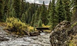 En flod i bergen royaltyfri bild