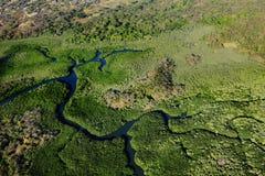 En flod i Costa Rica Arkivbild
