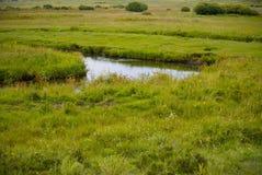 En flod i den Inner Mongolia grässlätten Royaltyfria Bilder