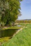 En flod i den Sussex bygden Royaltyfri Foto