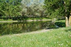 En flod i parkera Royaltyfri Bild