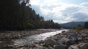 En flod i träna i en solig dag Royaltyfri Foto