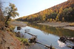 En flod landskap Arkivfoto