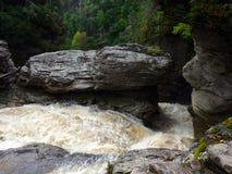 En flod som forsar till och med en kanjon Fotografering för Bildbyråer