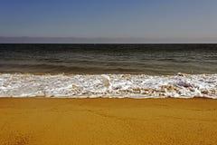 En flygseagull över vågorna i havet i Malibu, Los Angeles, USA I SOMMARTID Arkivfoto
