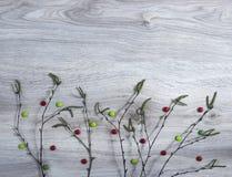 En fondo de madera un abedul ramifica con los brotes florecientes de un verde verde rojo de la lechuga de los caramelos del verde Fotos de archivo
