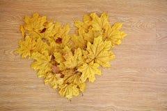 En forme de coeur des feuilles d'automne Photo libre de droits