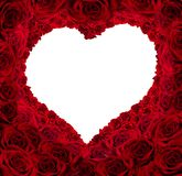En forme de coeur des roses rouges avec le fond d'isolement pour l'espace de copie Photos stock
