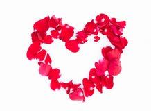 En forme de coeur du pétale de rose rouge Photographie stock libre de droits