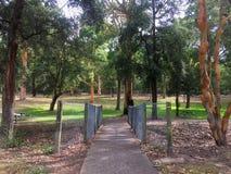 En fot- bro över en liten vik i ett australiskt parkerar arkivfoto