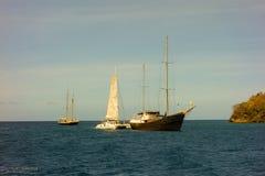 En fransk katamaran med ett fastklämt seglar Fotografering för Bildbyråer