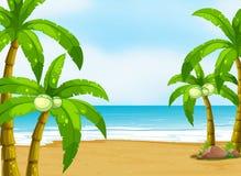 En fridsam strand Arkivfoton