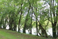 En fridsam View_04 Fotografering för Bildbyråer