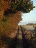 En Frosty Morning Walk Arkivfoto